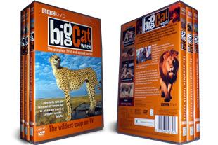 Big Cat Diaries DVD