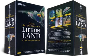 Life On Land DVD box set