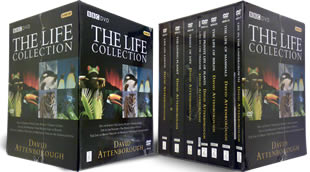The Life Collection DVD
